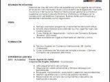 Resumen Profesional Y Laboral Para Cv Modelo Curriculum Vitae Agente De Compras Livecareer