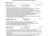 Resumen Profesional Y Laboral Para Cv Resumen Profesional