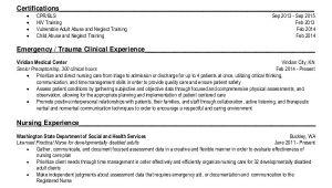 Rn Student Resume Nursing Student Resume Example 10 Free Word Pdf