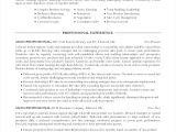 Ross School Of Business Resume Template Ross School Of Business Resume Template Pimpinup Com