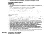 Safety Professional Resume Professional Resume Examples World Of Reference