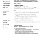Safety Professional Resume Safety Manager Resume Sample Example Job Description