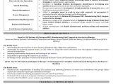 Sales Engineer Resume 19 Sales Resume Templates Pdf Doc Free Premium