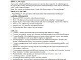 Sales Rep Job Description Template Sales Representative Job Description Template 10 Free