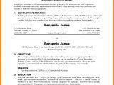 Sample College Freshman Resume 7 Freshman College Student Resume Fancy Resume