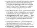 Sample In House Counsel Resume Litigation attorney Resume Objective Sidemcicek Com