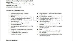 Sample New Grad Nursing Resume Rn Resume Bag the Web