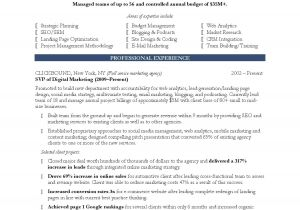 Sample Of Resume Template Marketing Resume Template Health Symptoms and Cure Com