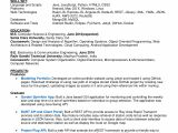 Sample Resume for 2 Years Experience In Mainframe Download Free Sample Developer Resume Sample Professional