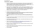 Sample Resume for 2 Years Experience In Manual Testing Sample Resume for Manual Testing Professional Of 2 Yr