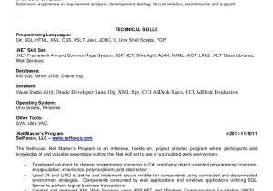 Sample Resume for 2 Years Experience In Net Net Resume Ke