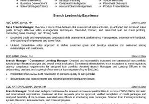 Sample Resume for Bank Teller at Entry Level Entry Level Paralegal Resume Resume Badak