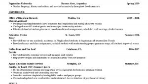 Sample Resume for Barista Position Barista Job Description Resume Samples