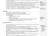 Sample Resume for Business Analyst In Banking Domain Business Analyst Resume