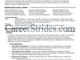 Sample Resume for Business Analyst In Banking Domain Resume for Business Analyst In Banking Domain Danaya Us