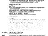 Sample Resume for Data Warehouse Analyst Data Warehouse Analyst Curriculum Vitae Google Verbs