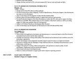 Sample Resume for Data Warehouse Analyst Data Warehousing Analyst Jobs Resume Example Best Resume