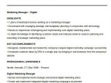 Sample Resume for Digital Marketing Manager 40 Free Manager Resume Templates Pdf Doc Free