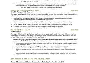 Sample Resume for Digital Marketing Manager Digital Marketing Manager Free Resume Samples Blue Sky