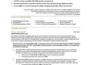 Sample Resume for Digital Marketing Manager Digital Marketing Manager Resume the Letter Sample