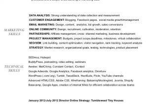Sample Resume for Digital Marketing Manager Digital Marketing Resume Of Bridget Thornton