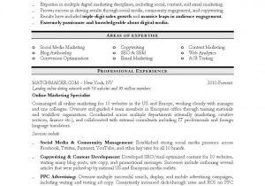 Sample Resume for Digital Marketing Manager Digital Marketing Resume Sample Resume Resume Examples