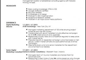 Sample Resume for Digital Marketing Manager Free Executive Digital Marketing Manager Resume Template