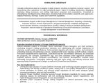 Sample Resume for Executive assistant to Senior Executive 8 Sample Executive Resumes Sample Templates