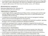 Sample Resume for Executive assistant to Senior Executive Resume for An Executive assistant Susan Ireland Resumes