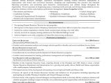 Sample Resume for Experienced Hr Executive Sample Resume for Experienced Hr Executive Unique Sample