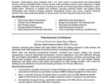 Sample Resume for Experienced Sales Professional Sales Manager Resume Sample Professional Resume Examples