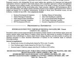 Sample Resume for Experienced Sales Professional Sample Resume format for Experienced Sales Executive