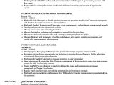 Sample Resume for International Jobs International Sales Manager Resume Samples Velvet Jobs