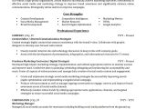 Sample Resume for It Companies Advertising Marketing Resume Sample Professional