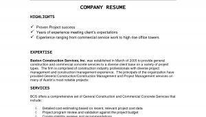 Sample Resume for It Companies Corporate Resume Examples Resume Ideas Company Resume