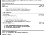 Sample Resume for It Companies Mock Resume Free Excel Templates