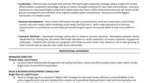 Sample Resume for Managing Director Position Executive Managing Director Resume
