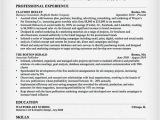Sample Resume for Marketing Executive Position Salesperson Marketing Cover Letters Resume Genius