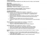 Sample Resume for Masters Program 13 New Resume format for Phd Candidate Resume Sample