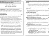 Sample Resume for Mid Level Position Sample Resume for A Mid Career Professional Dummies