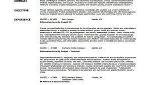 Sample Resume for Network Security Engineer Network Engineer Resume Template 9 Free Word Excel