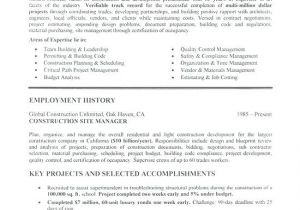 Sample Resume for Older Job Seekers Resume Examples for Older Job Seekers April Onthemarch Co