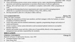 Sample Resume for Sap Mm Consultant Sap Mm Consultant Resume Resumecompanion Com Resume