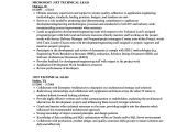 Sample Resume for Technical Lead Net Technical Lead Resume Samples Velvet Jobs