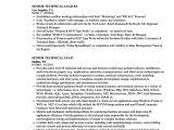 Sample Resume for Technical Lead Senior Technical Lead Resume Samples Velvet Jobs