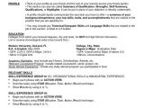 Sample Resume for Zoologist Resume format for Bsc Zoology Resume format