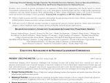 Sample Resume for Zs associates Sample Resume for Zs associates Sample Resume