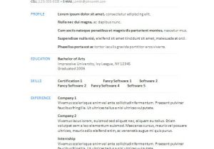 Sample Resume format Word Download 34 Microsoft Resume Templates Doc Pdf Free Premium