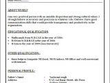 Sample Resume format Word File Resume Blog Co June 2014