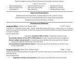 Sample Resume Of A Banker Investment Banker Resume Sample Monster Com